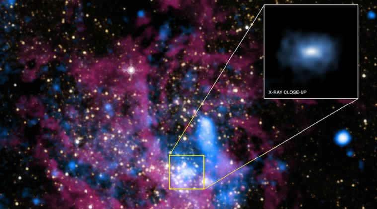 Black hole collisions, gravitational wave detectors, Monash University, LIGO Scientific Consultation, Big Bang, neutron stars, computer simulations, data analysis