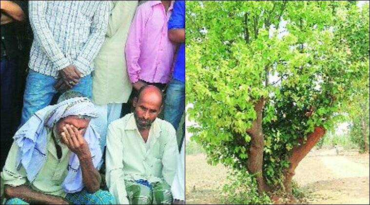 Jharkhand: Police accused of 'sabotaging the investigation' in Latehar killings