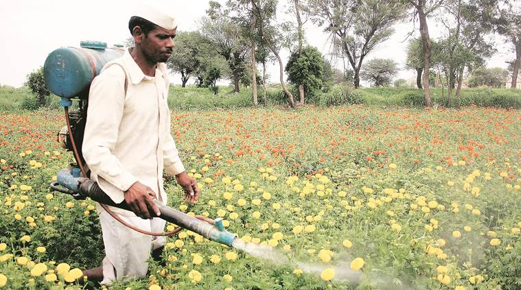 Maharshtra government to deploy drones to spray insecticide on