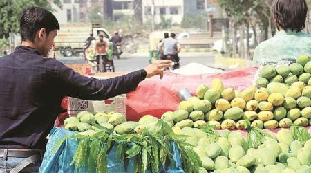 Ahmedabad Municipal Corporation to check use of ripening agents on mangoes