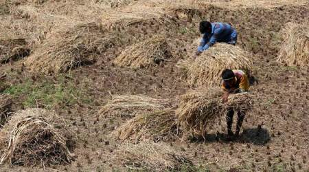 How MGNREGA can be re-engineered for doubling of farmers'incomes