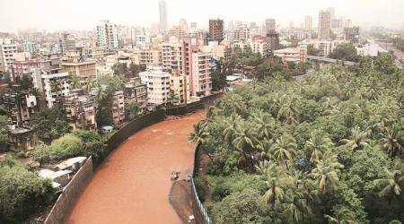 BMC to appoint consultant to rejuvenate three rivers and improve water quality