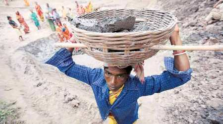 NREGA v minimum farm wages: How jobs Act is losing out to fundscrunch