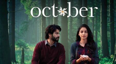 October box office collection Varun Dhawan film