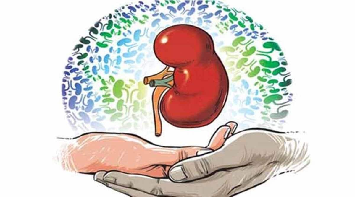 Kidney swap
