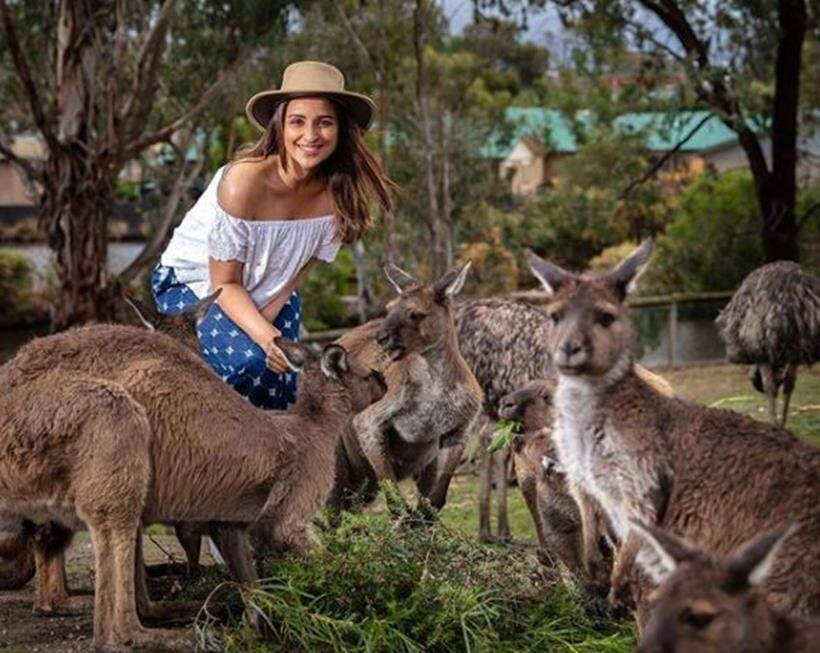 parineeti chopra in melbourne Ballarat Wildlife Park