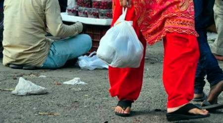 plastic bags, plastic pollution, environment pollution, plastic bag circulation, indian express