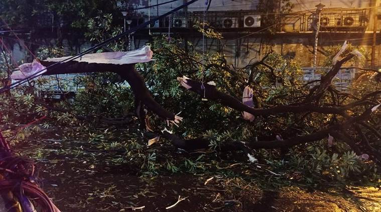 15 people killed in twin storms in Kolkata and nearby districts