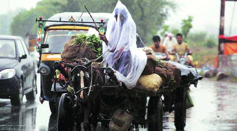 monsoon, monsoon in india, rainfall, weather forecast, central India monsoon, central India rainfall, india meteorological department, imd, indian express news