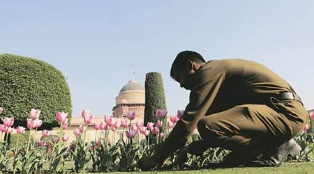Gardening dreams at Rashtrapati Bhavan end in police complaint