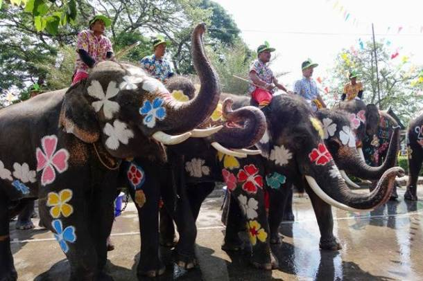Songkran, Songkran 2018, Songkran festival, Songkran thailand new year, Songkran buddhist new year, water water-splashing Songkran festival with elephants, indian express