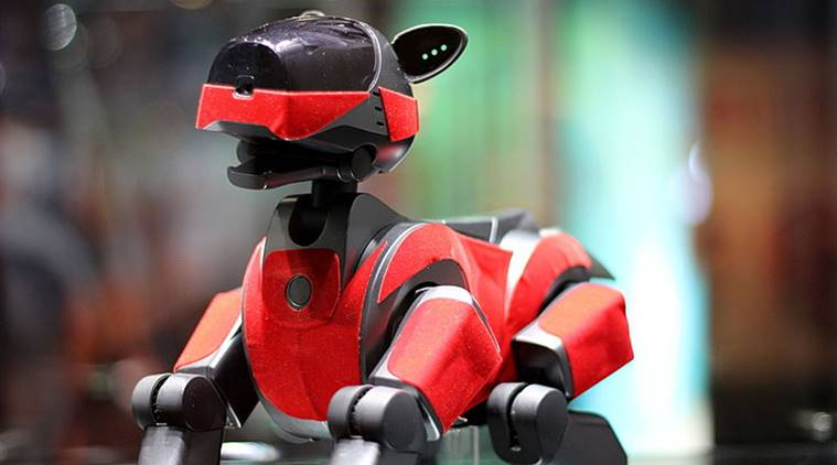 japan's old robot dog given funeral, Japan robot dog funeral, robot dogs japan, japan funeral dog, funeral given to dog, bizarre news, indian express, indian express news