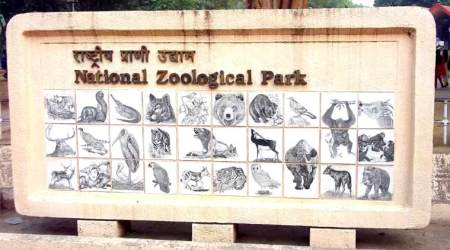 How Delhi zoo bosses sneaked in animals to replace the dead