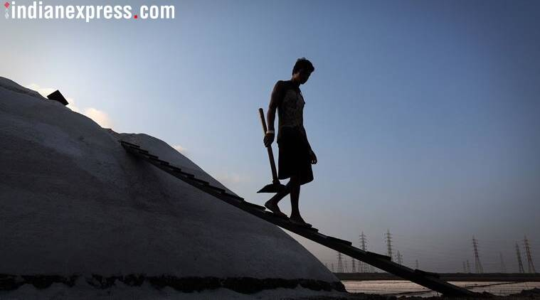 Labour Day: Tamil Nadu salt pan workers fight low wage, temporary employment