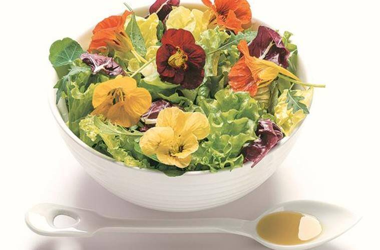 indian cuisine, flowers in indian cuisine, edible flowers, indian food mahua tree, mahua flowers, indian express food articles, indian express talk page, indian express features