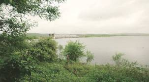 PIL filed in Gujarat High Court against desilting of dam in Gir