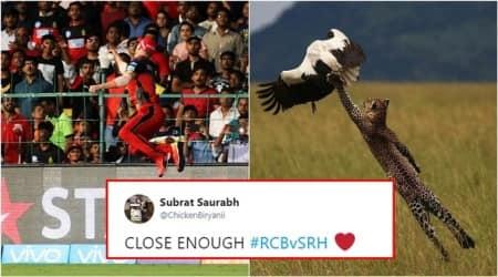 IPL, IPL 2018, IPL 2018RCB, RCB vs SRH, Royal Challengers Bangalore Sunrisers Hyderabad, IPL Latest, IPL Virat Kohli,Virat Kohli matches, Virat Kohli RCB, Virat Kohli RCB matches, Virat Kohli RCB vs SRH matches, Indian Express, Indian express News