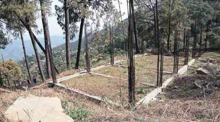 Illegal construction: How it all began — A plea in NGT against a Himachal govthotel