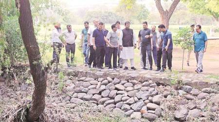 Chandigarh Municipal Corporation organises 'walk with nature' programme