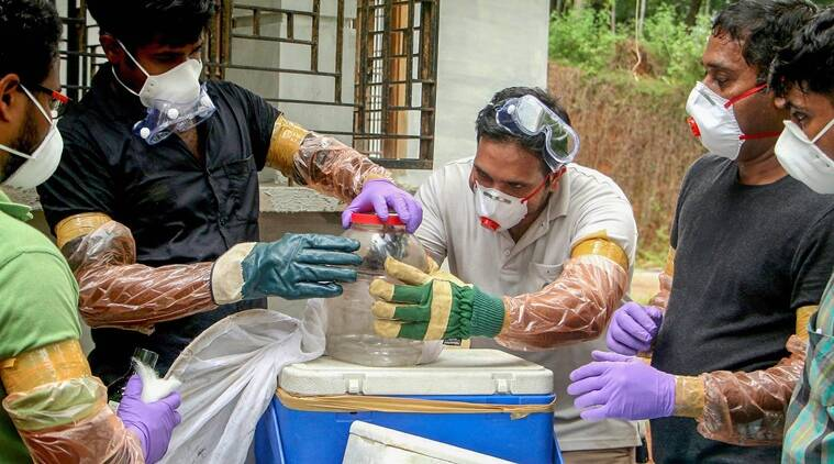 Nipah outbreak in Kerala: Six dead, Centre rushes joint probe team
