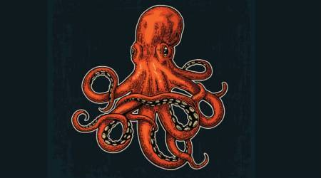 Speakeasy: Octopus in the Pan
