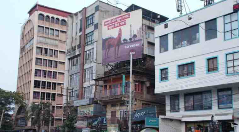 PETA billboard in Assam, PETA, Northeast dog smuggling, Assam