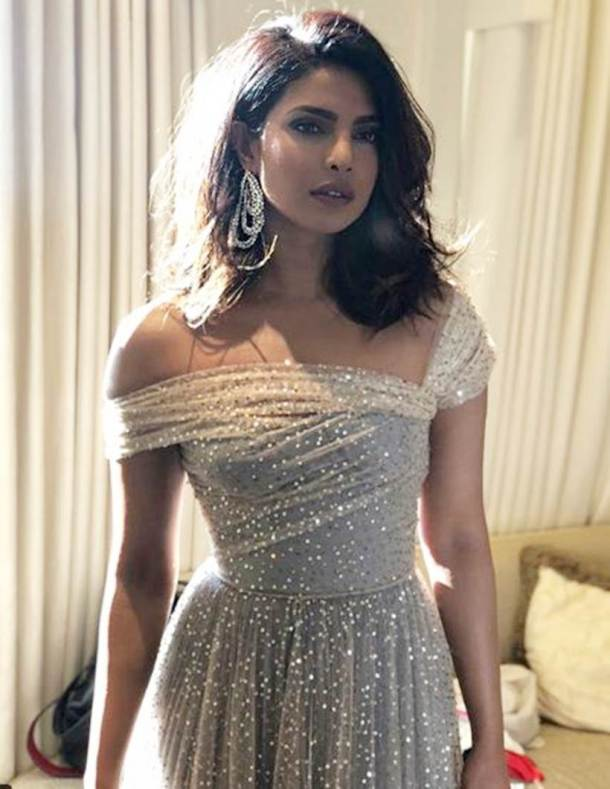 priyanka stunned in dior dress