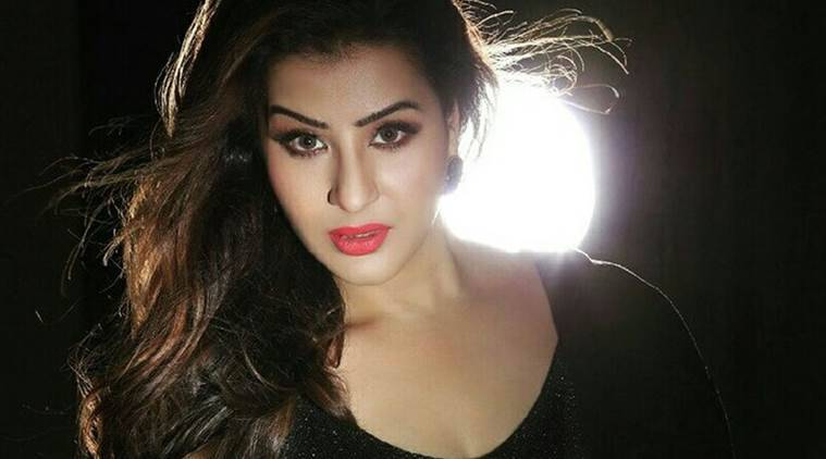 Bigg Boss 12: Nehha Pendse to enter the house?