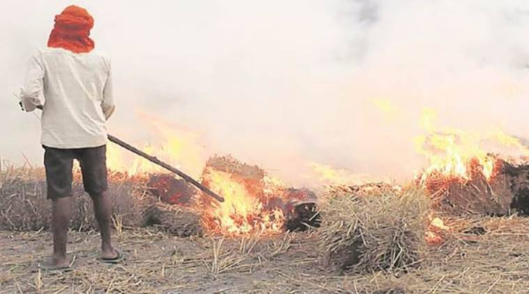 Farmers to hold convention on stubble burning