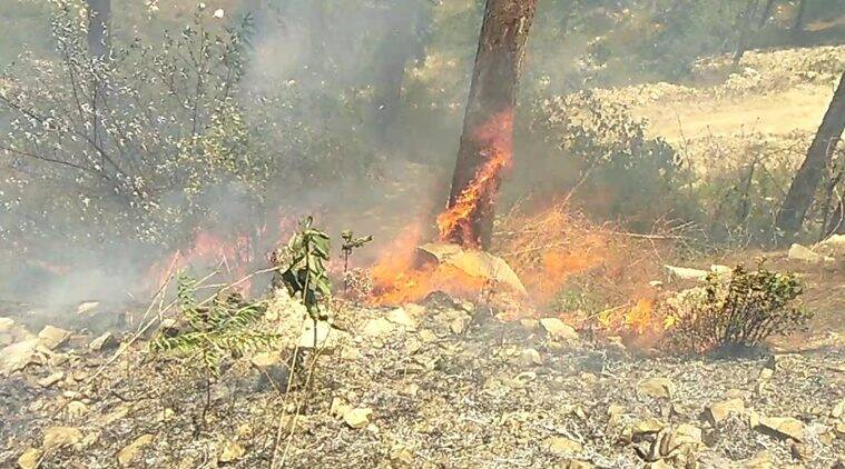Uttarakhand: Forest fires burn more than 2000 hectares of land in 2018, CMTrivendra Rawat reprimands officials