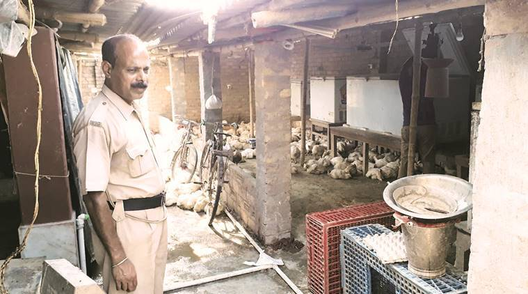 Racket supplying dead animal mean to Kolkata restaurants thrived with municipal staff help