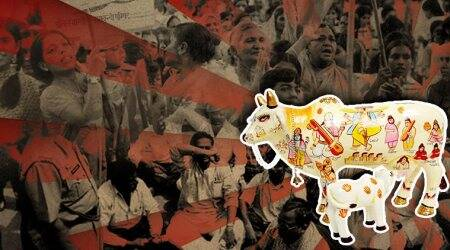 Why the cow is worshipped in Hindutva politics