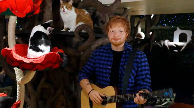 Ed Sheeran at Madame Tussauds