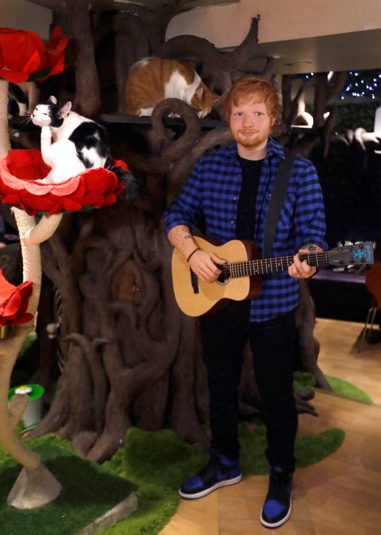 Ed Sheeran wax statue