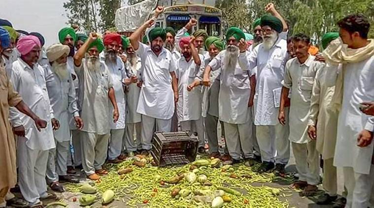 Farmers throw vegetables on a road during a protest at Bagha Purana in Moga district of Punjab on Friday. (PTI)