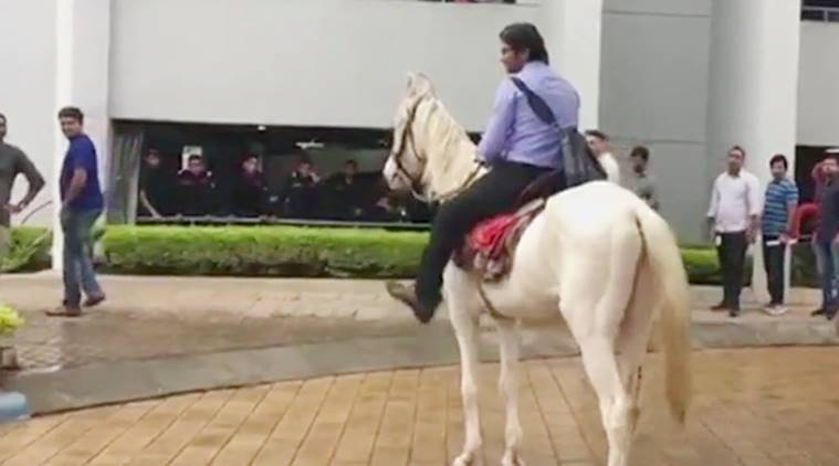 Bengaluru man rides to office horse, Bengaluru horseride viral photo, engineer takes horse to office, viral Bengaluru horse photo, viral stories, indian express, indian express news