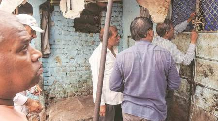 Vadodara: 17 bovines rescued from illegal slaughter houses