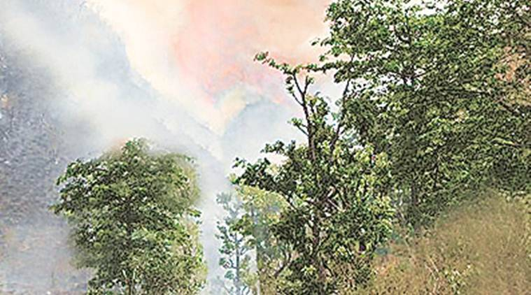 Bushfire for adventure: FIR against three students for setting afire dry bushes in wildlife sanctuary