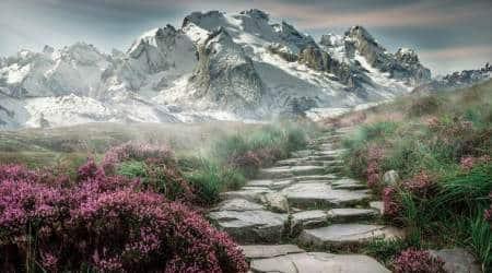 mountains, bone growth, genetics, biological mechanism, less oxygen, higher altitude, Himalayan Sherpa, Indian Express, Indian Express News