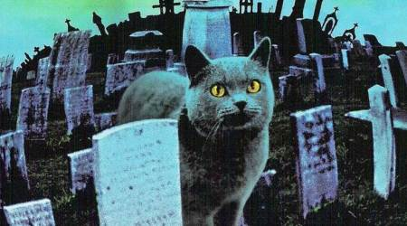 Pet Sematary movie synopsis and castingrevealed