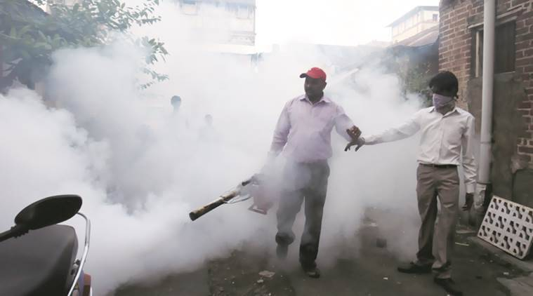 As per the report, last year, the number of malaria cases (provisional) reported in the city was 114. In 2016 and 2015, the number of cases was 157 and 152 respectively.