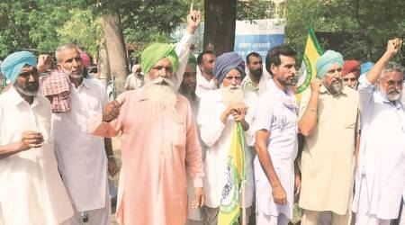 Adamant on early paddy sowing, farmers launch dharnas across Punjab