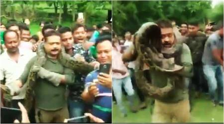 VIDEO: Villagers' SELFIE craze with PYTHON puts forest officer's life at risk as it tries to strangles him
