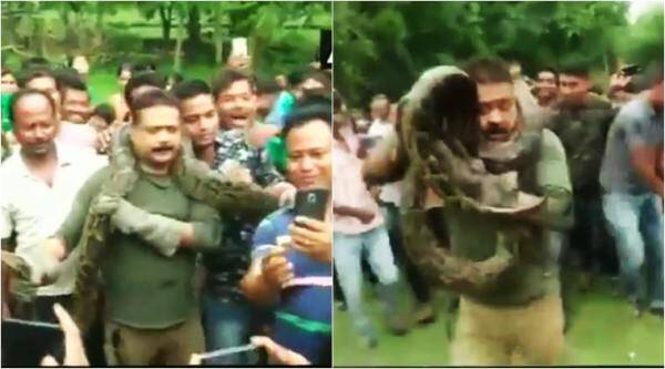 python, selfies with python, bengal forest official python video, python strangles forest officer, python strangle man video, deadly selfies,viral videos, indian express, trending news