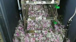 Rats blamed for eating through currency worth Rs 12 lakh in AssamATM