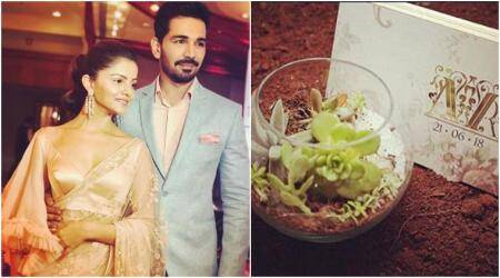 Rubina Dilaik and Abhinav Shukla go eco-friendly for their wedding invite