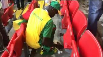 WATCH: Senegal fans clean stands after 2-1 win over Poland