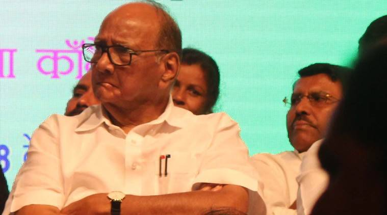 sharad pawar, sharad pawar meeting, sharad pawar lok sabha polls, sharad pawar maharashtra polls, nawab malik, Nationalist Congress Party, indian express, latest news, india news