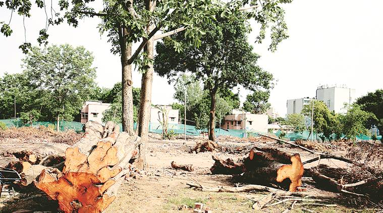 Redevelopment project in Delhi began during Congress rule, claims AAP