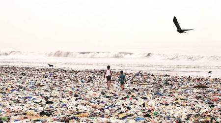 Volunteers collect 30 tonnes of garbage in eight hours at Mumbai's Versova beach